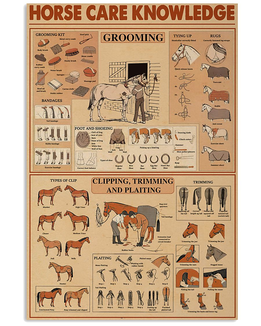 horse care knowledge vintage poster 1
