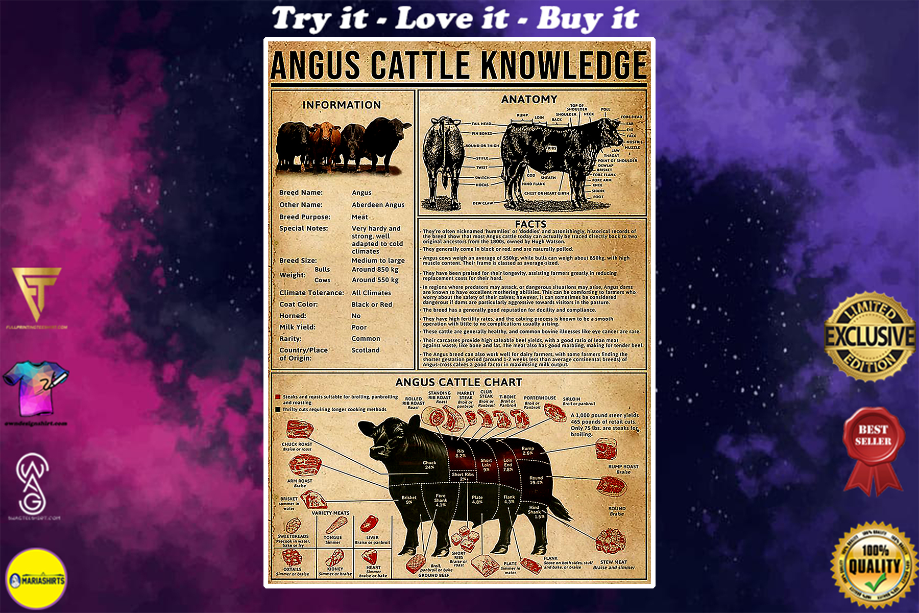 vintage angus cattle knowledge poster