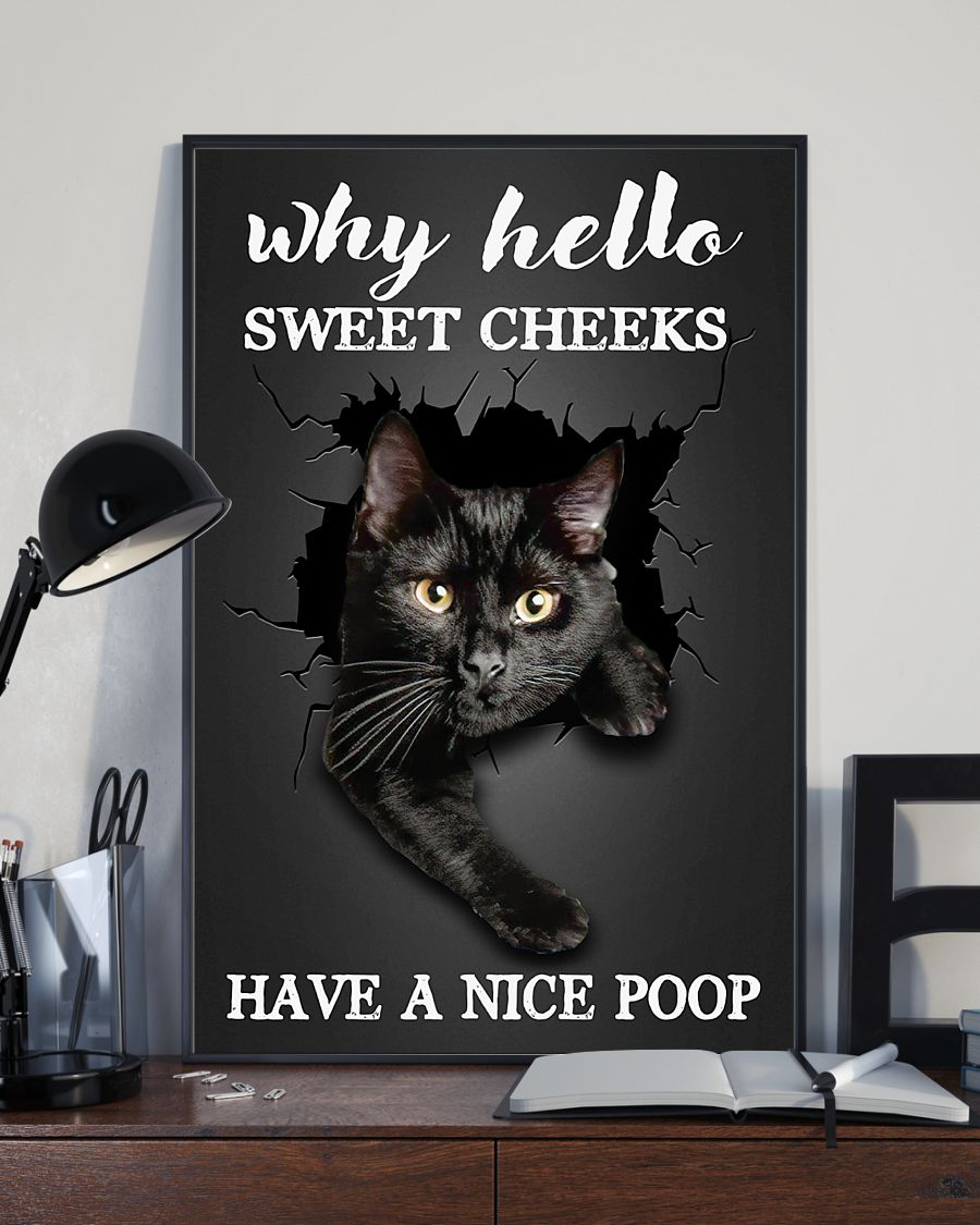 why hello sweet cheeks have a nice poop black cat poster 3